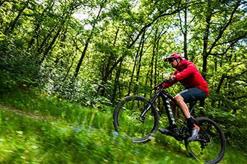 המדריך לבחירת אופני שטח חשמליים