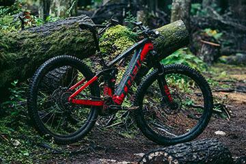 אופני Trek Rail במסלול ביער